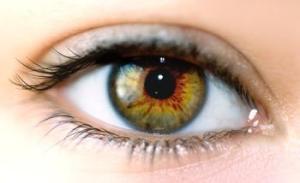 416235149_eye_exam_answer_4_xlarge